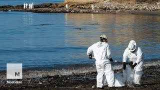 California oil spill fouls at least 9 miles of scenic beaches | Mashable