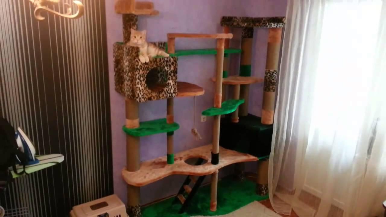 Игровые комплексы для кошек своими руками с чертежами фото 709