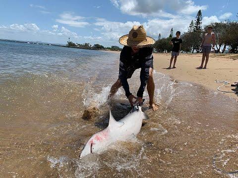 Land Based Shark Fishing QLD