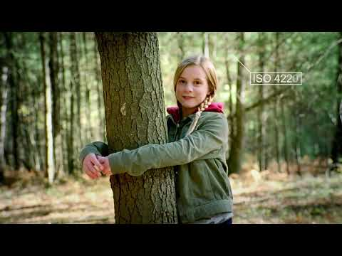 ISO and the environment