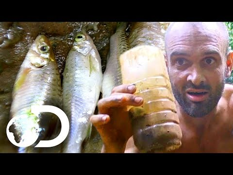 How To Use Your Faeces to Catch Fish | Marooned with Ed Stafford