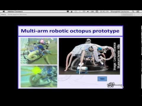 ShanghAI Lectures 2013 - Lecture 5 - Soft Robotics and Bioinspiration I