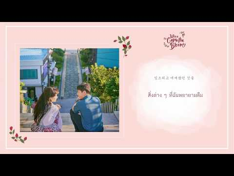 Download THAISUB Foolish Love - John Park OST. When the Camellia Blooms part 1 Mp4 baru
