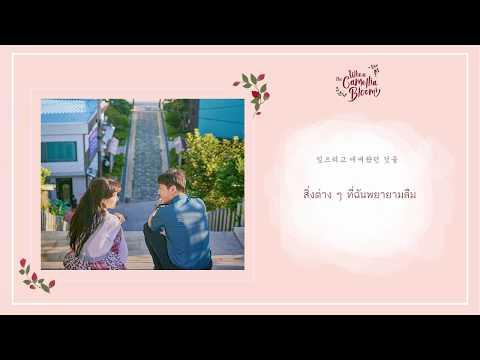 [THAISUB] Foolish Love - John Park OST. When The Camellia Blooms Part 1