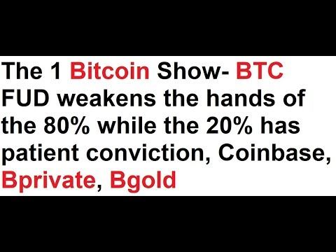 Bitcoin FUD weakens the hands of the 80% while the 20% has patient conviction, Coinbase, Bprivate