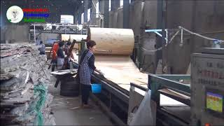 visit factory the technology of plywood production in China