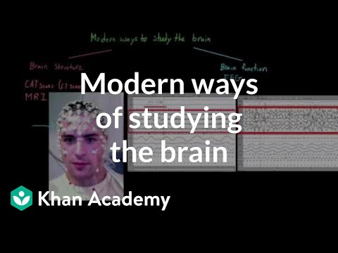 Modern ways of studying the brain | Organ Systems | MCAT | Khan Academy