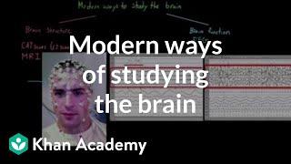 Modern ways of studying the brain | Organ Systems | MCAT | Khan Academy