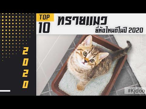 ทรายแมว ยี่ห้อไหนดี ดีที่สุดในปี 2020 เก็บกลิ่นได้ดี ฝุ่นน้อย มาดูกันเลย!!