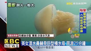最新》英女潛水員赫見巨型桶水母 同游25分鐘