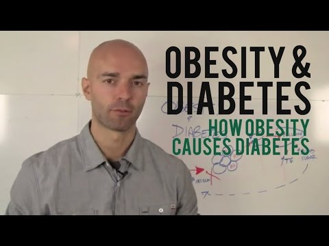 Obesity and Diabetes - How Obesity Causes Diabetes