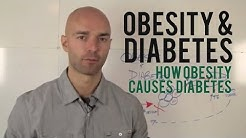 hqdefault - A Codependent Relationship Diabetes And Obesity