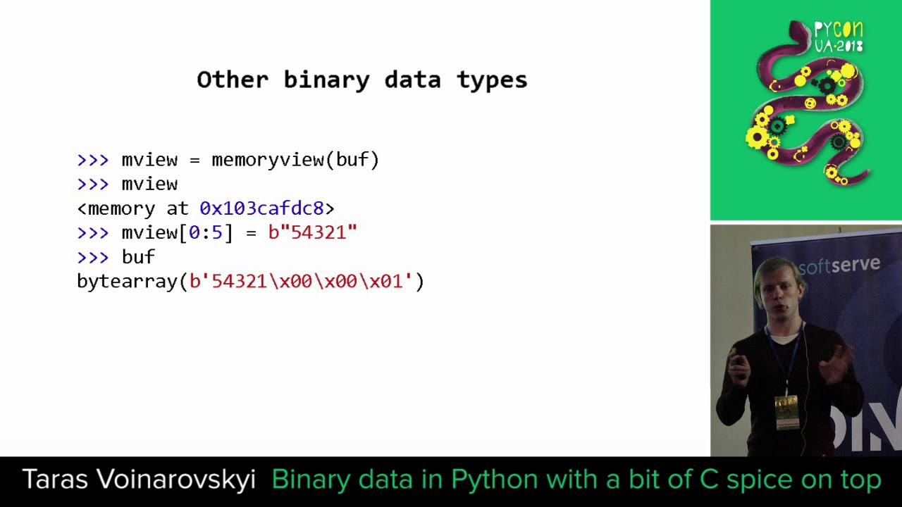 Image from Binary data in Python with a bit of C spice on top.