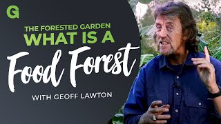 The Forested Garden: What is a Food Forest?