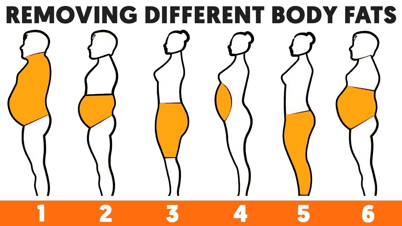 6 Types Of Body Fats And How To Get Rid Of Them