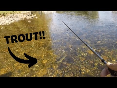 Rainbow Trout On Rebel Crankbaits (Watauga River)