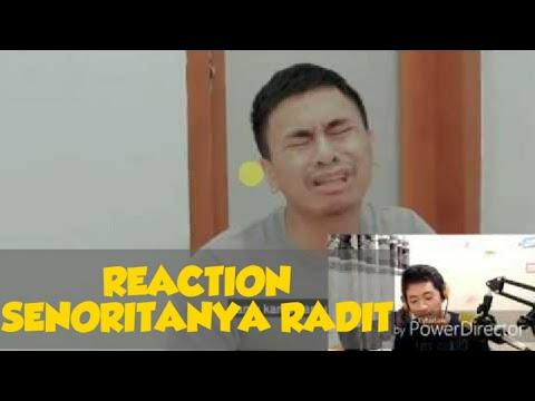 reaction---senorita-(shawn-mendes-indonesia-cover)-[feat.-google-translate]
