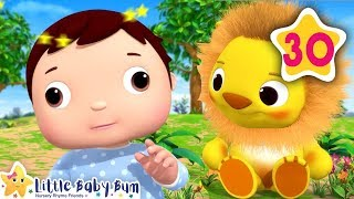 Alphabet and Animals Song | How To Nursery Rhymes | Fun Learning with LittleBabyBum