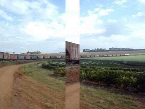 TRAIN TREM COUNTRY 3 - RAILWAYS BRAZILIAN - by FARINA TRAVEL_VIDEO