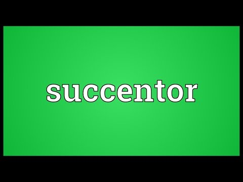 Header of succentor