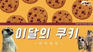 서울어린이대공원 5월 동물원 쿠키 영상(미어캣편)썸네일