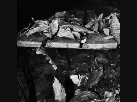 Ludovico Einaudi - Lady Labyrinth (new album Nightbook)