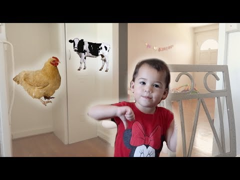 TWO YEAR OLD EXPLAINS WHY SHES VEGETARIAN.