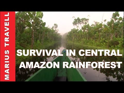 Survival in the Central Amazon Rainforest Jungles