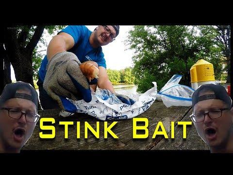 BEST CATFISH BAIT CHALLENGE Which Works Better? Rotten Shrimp Or Cut Bait - KastKing