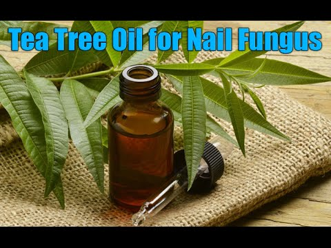 How To Use Tea Tree Oil for Nail Fungus