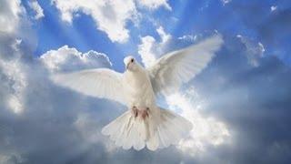 Saname Señor con tu Espiritu