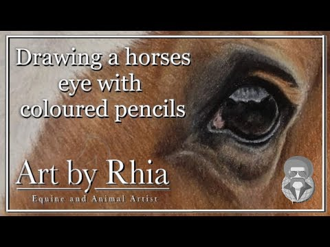 how-to-draw-a-horses-eye-with-colored-pencils-(tutorial)