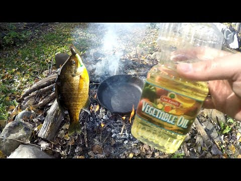 Catch And Cook Bluegill Over A CAMPFIRE ?!