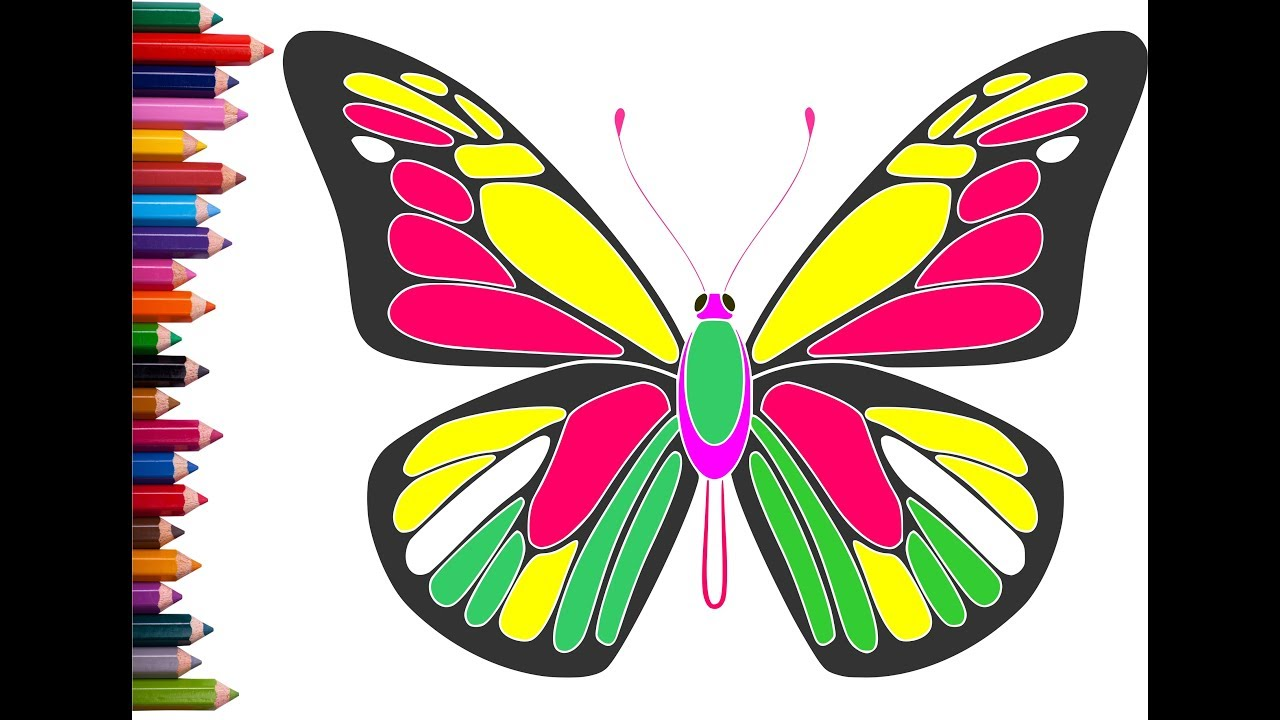Kids Drawing | Kids Coloring Butterfly  Step by step | Kids Sketching Easy