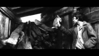 Mademoiselle 1966 Richardson Trailer