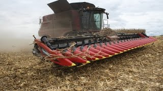 24 Row Corn Head Geringhoff Rota Disc