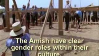 "amish barn raising (as depicted in the film ""Witness"")"