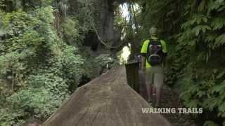 Explore the Hamilton & Waikato region of New Zealand
