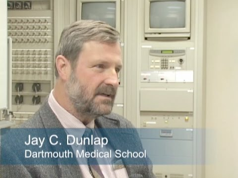 Interview Jay C  Dunlap
