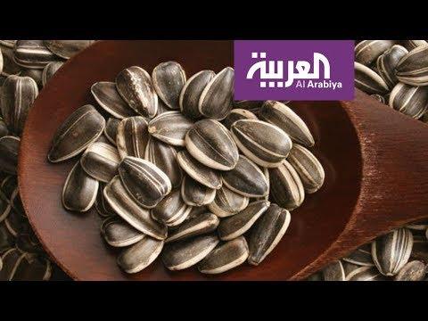 صباح العربية | ماهي فوائد -الفصفص- الغذائية؟  - نشر قبل 56 دقيقة