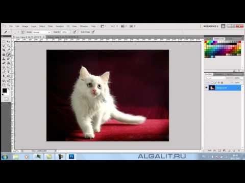 Как открыть фото в Фотошоп
