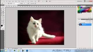 Как открыть картинку в Фотошопе.(В видео уроке подробно рассказано о способах открывания изображения в программе Photoshop., 2013-02-14T13:59:49.000Z)