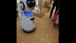 A dancing robot amuses little children.