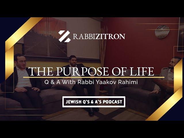 Q & A With Rabbi Yaakov Rahimi- The Purpose of Life