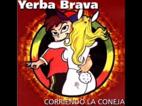 VAMOS A BAILAR - YERBA BRAVA