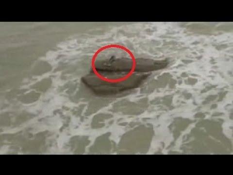 Jovenes Captan A Sirena En Playa De Israel