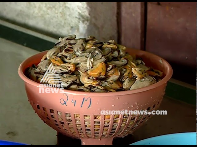 Success story in mussel farming  | Money Time 9 JUN 2018