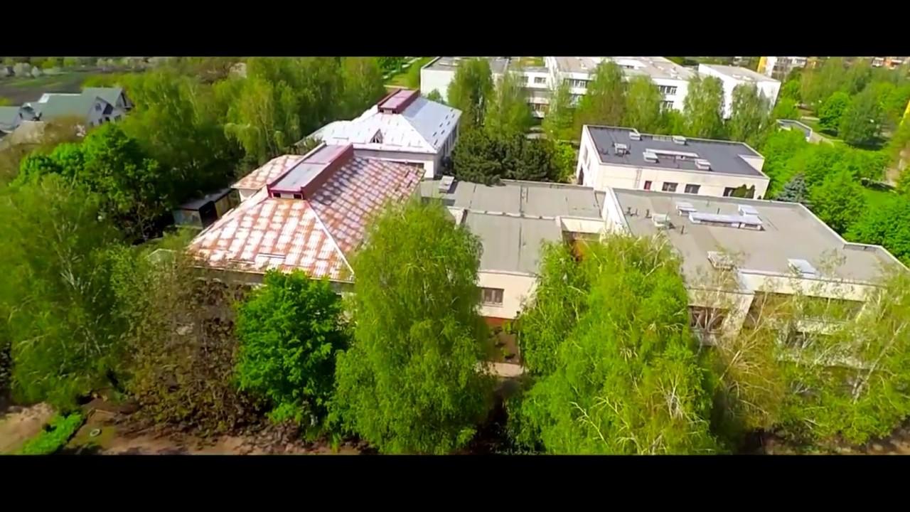 City Dolinskaya (2016) Kirovograd region Ukraine + playful Kitten .
