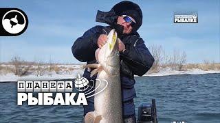 Зимний спиннинг. Щука, судак, нельма. Рыбалка в Казахстане | Планета рыбака