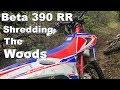 Shredding The Woods On The Beta 390rr